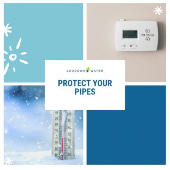 thermometer in snow & thermostat